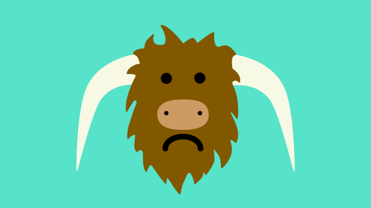 Yik Yak's CTO drops out as the hyped anonymous app stagnates