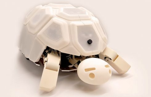 This tortoise shows kids that robot abuse is bad